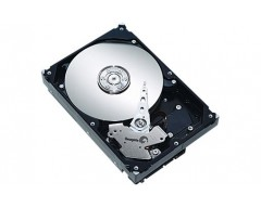 "Seagate ST3500DM002 500GB 7200 RPM 16MB Cache SATA 3.0Gb/s 3.5"" Server Hard Disk Drive HDD"